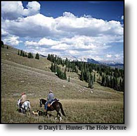 Hunters Targhee National Forest
