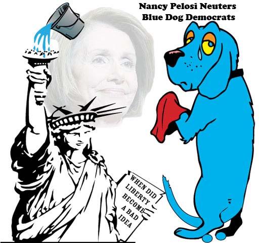 blue dog democrat